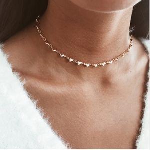 Jewelry - Chocker/ Necklace❄️